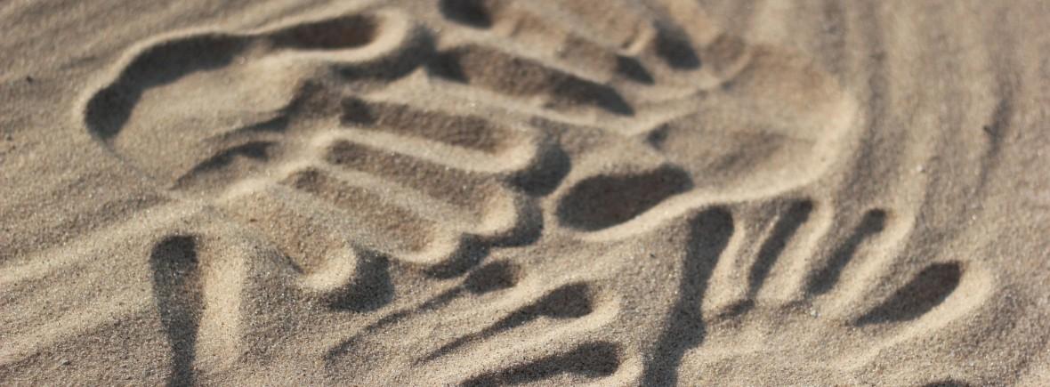 handprints-500659_1920